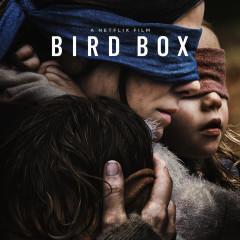 Bird box – recenzja